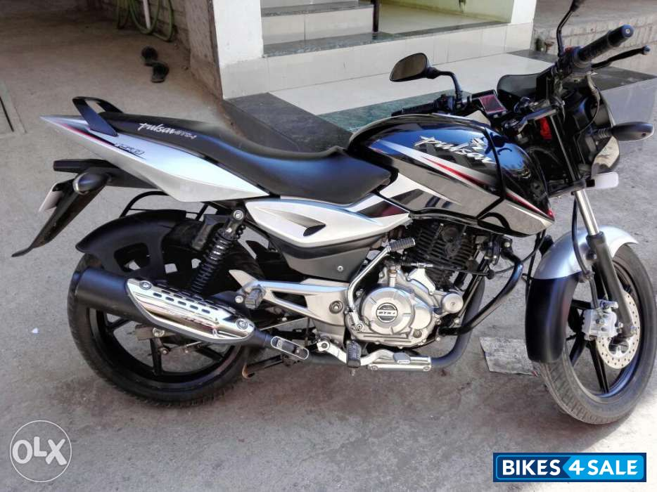 Used 2014 model Bajaj Pulsar 150 DTSi for sale in Pune  ID