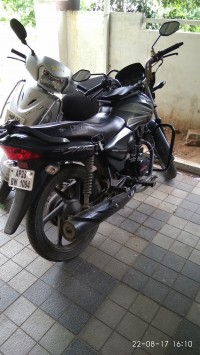 Honda CB Shine 2013 Model