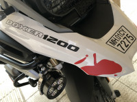 White With Graphics BMW R 1200 GS