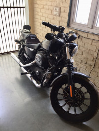 Harley Davidson Iron 883 2011 Model