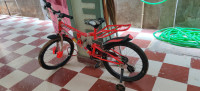 Bicycle 2019 Model