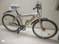 Bicycle Avon 2020 Model