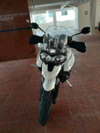 White Triumph Tiger 800 XR