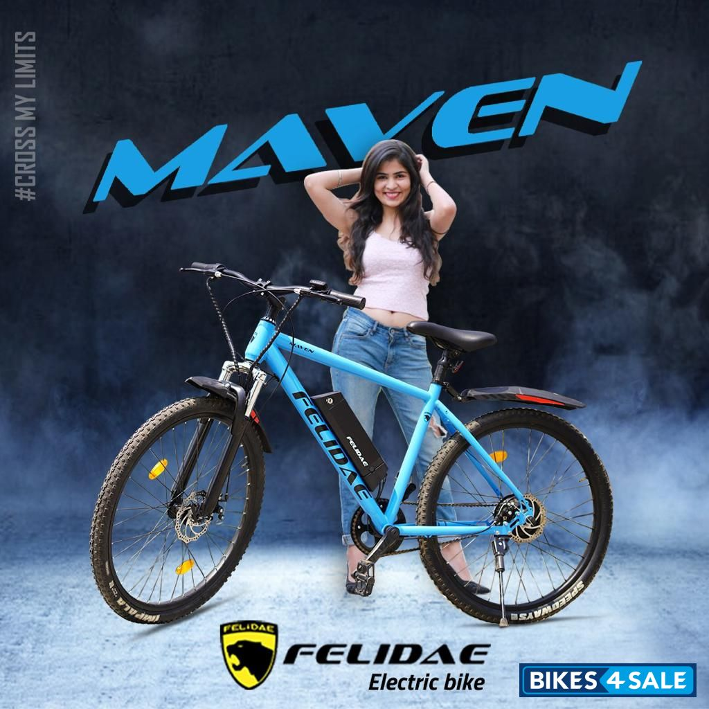 Felidae Maven Electric Cycle