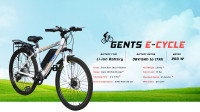 Nibe Motors Gents E-Cycle