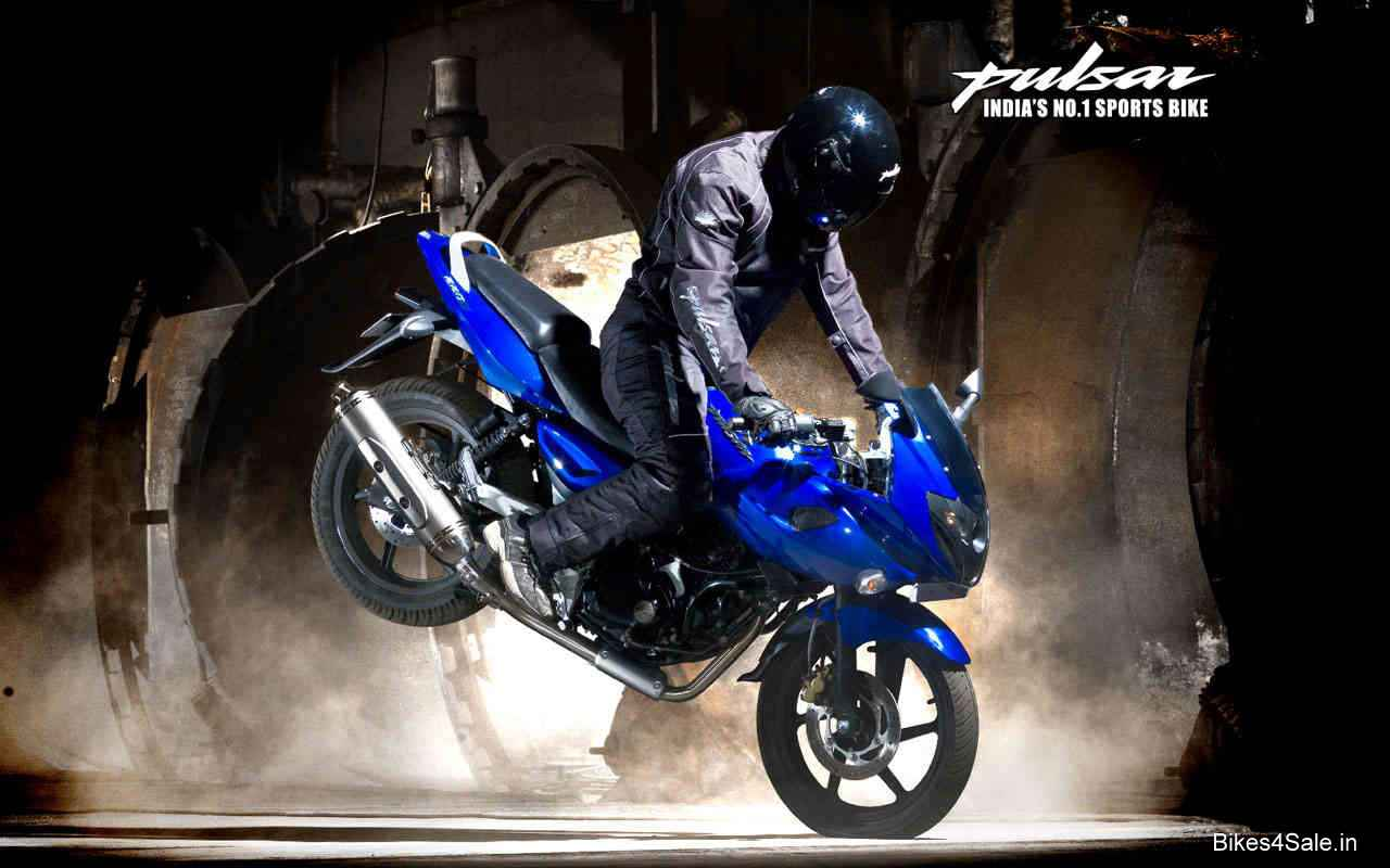 pulsar stunt mania wallpapers - bikes4sale