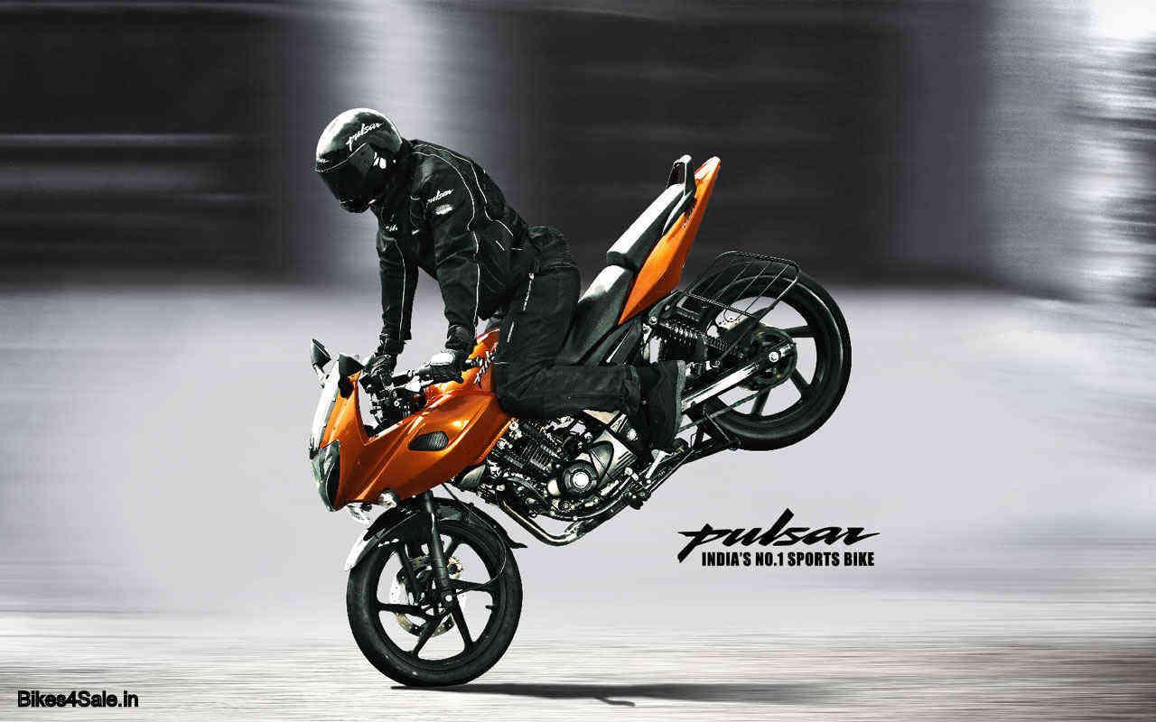 Pulsar Stunt Mania Wallpapers - Bikes4Sale